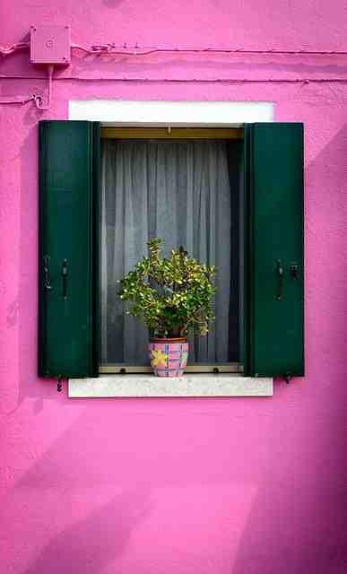 Quelle plante pour un balcon en plein soleil ?